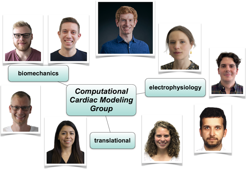 Cardiac Modeling Group